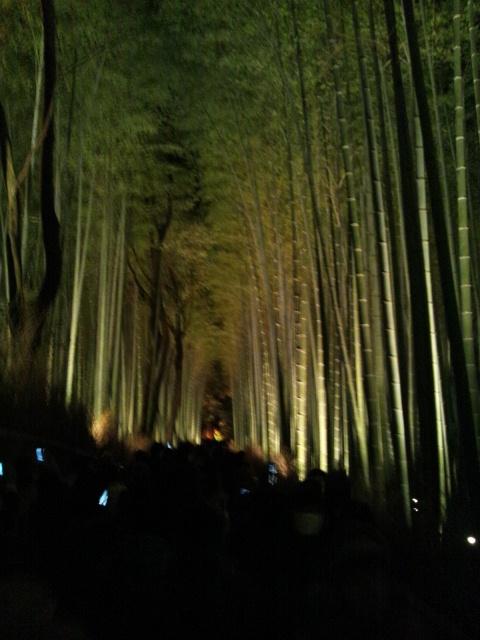 嵐山花灯路3