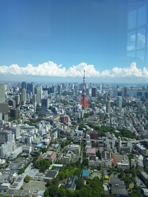 東京を見下ろす