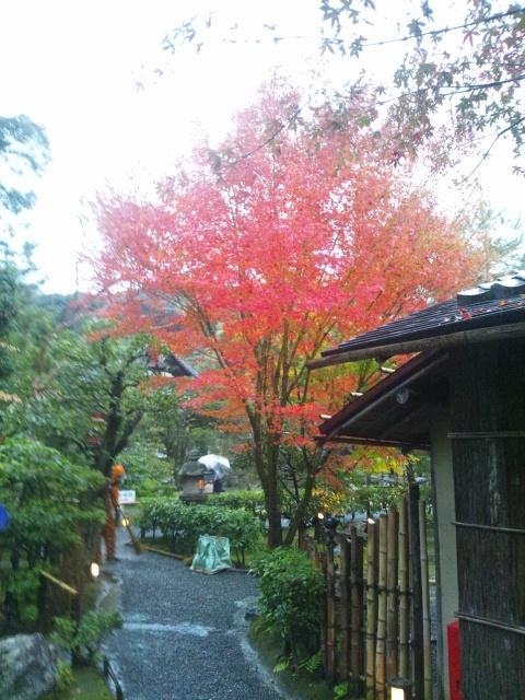 京都 秋   高台寺