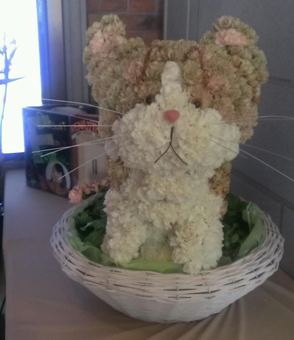 昨日は、SKE48松井玲奈ちゃん、生誕祭  その2