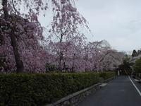 shimogawara1