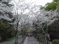 testugakunomichi1