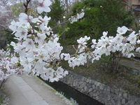 tetsugakunomichi2